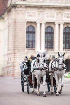 Traditioneller pferdekutscher fiaker in wien österreich
