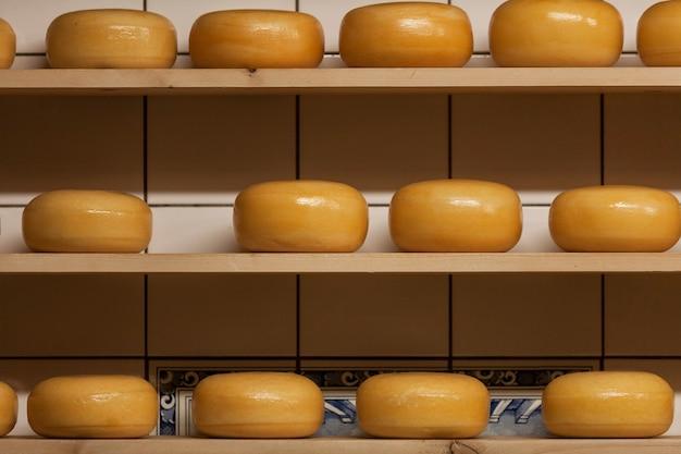 Traditioneller prozess der herstellung von holländischem käse gouda in zaanse schans