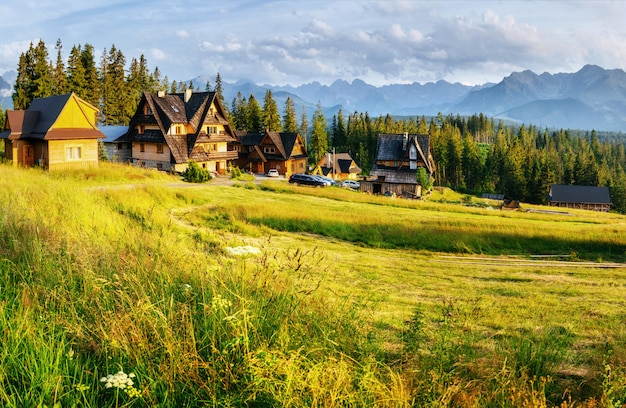 Traditionelles holzhaus in den bergen auf einem grünen feld berge, polen