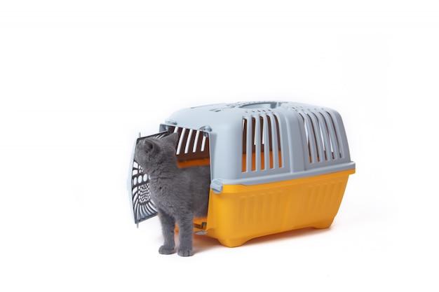 Träger für katzen und kleine hunde isoliert auf weiß