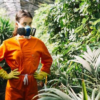Tragende verschmutzungsmaske des weiblichen gärtners, die anlagen im gewächshaus betrachtet
