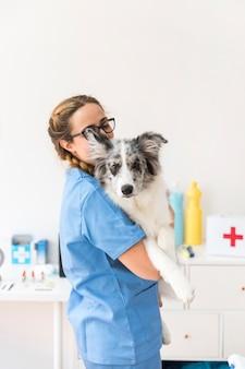 Tragender hund des jungen weiblichen tierarztes in der klinik
