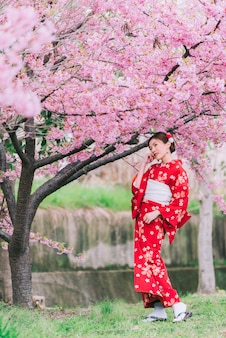 Tragender kimono der asiatin mit kirschblüten, kirschblüte in japan.