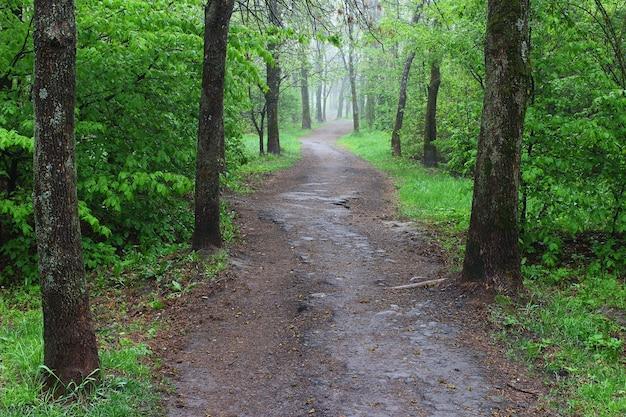 Trail im sommerstadtpark