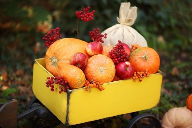 Traktor mit kürbissen, viburnum, eberesche, äpfeln