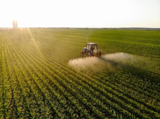 Traktor sprüht bei sonnenuntergang pestizide auf maisfelder