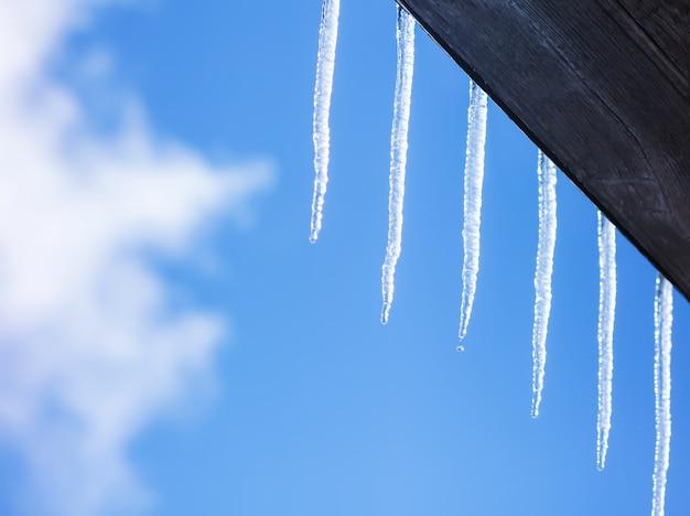 Transparente schmelzende eiszapfen, die an einem warmen sonnigen frühlingstag am holzhausdach auf blauem himmelshintergrund hängen
