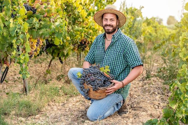 Traubenernte in sizilien junger bauer lächelnd