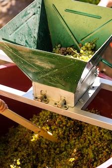 Traubenerntemaschine oder saftpresse bei der arbeit