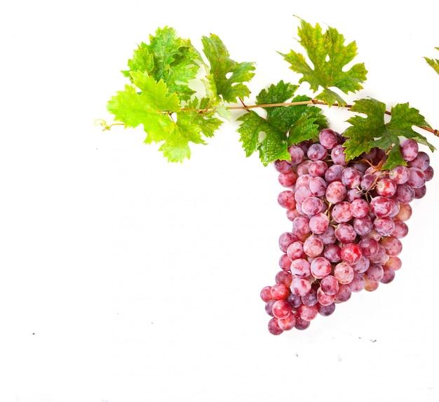 Traubenhaufen ist eine rosafarbene sorte