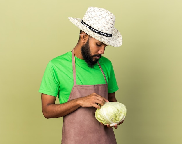Trauriger junger gärtner afroamerikanischer mann mit gartenhut, der kohl hält und betrachtet