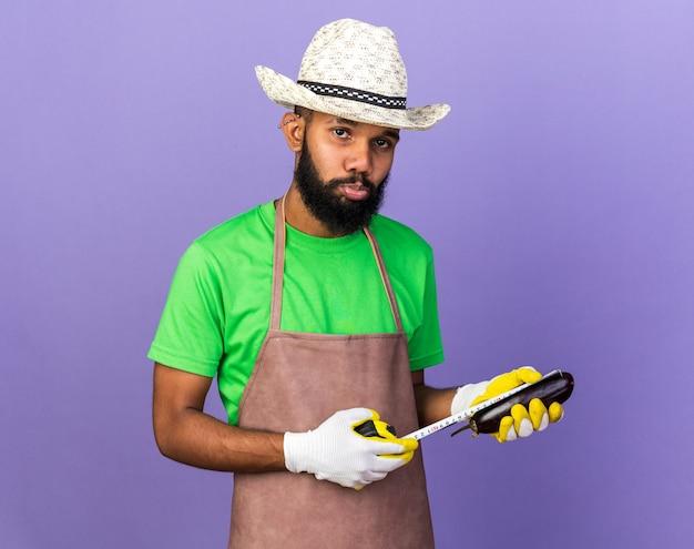 Trauriger junger gärtner afroamerikanischer typ mit gartenhut und handschuhen, die auberginen mit maßband messen