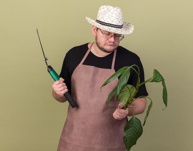 Trauriger junger männlicher gärtner, der gartenhut trägt, der haarschneidemaschinen hält und pflanze in seiner hand lokalisiert auf olivgrüner wand betrachtet