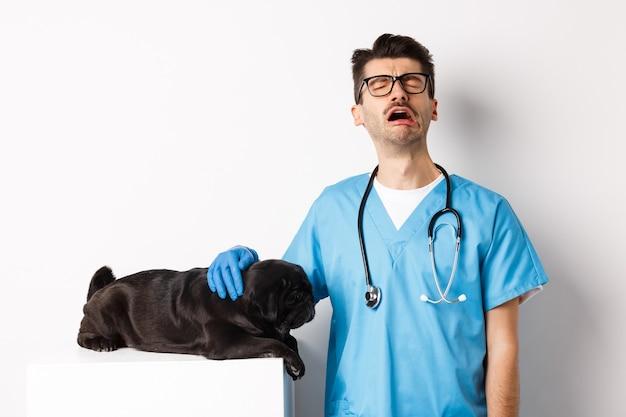 Trauriger männlicher arzt, der mitleid für niedlichen schwarzen hundemops füllt, der krank auf tierarztkliniktisch liegt, tierarzt weint und streichelt welpen, weiß.