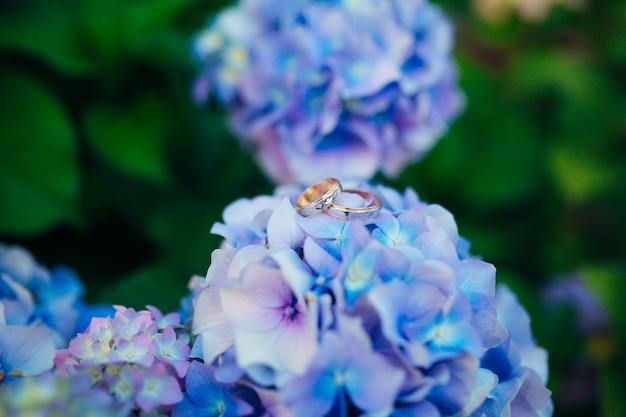 Trauringe an den hortensien