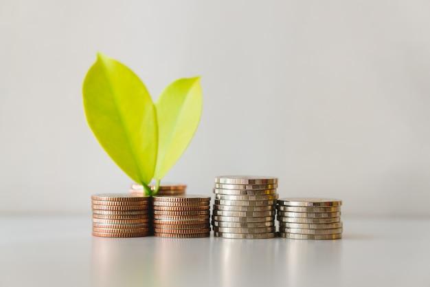 Treiben sie auf stapelmünzen mit dem weißen hintergrund unter verwendung als finanzwachstums- und geschäftskonzept blätter
