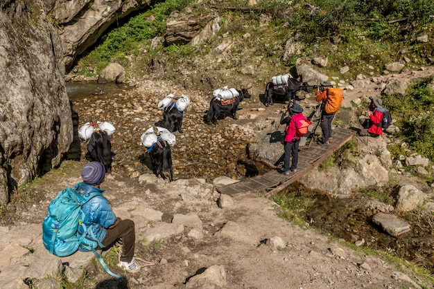 Trekker gehen auf dem weg zum mt.everest base camp in khumbu, nepal