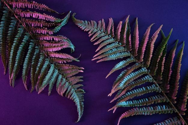 Trendiger dschungel in neonbeleuchtung. modernes, stilvolles exotisches pflanzenkonzept.
