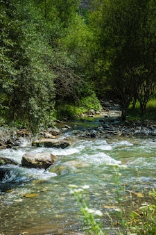 Trialeti-gebirgszug in georgia