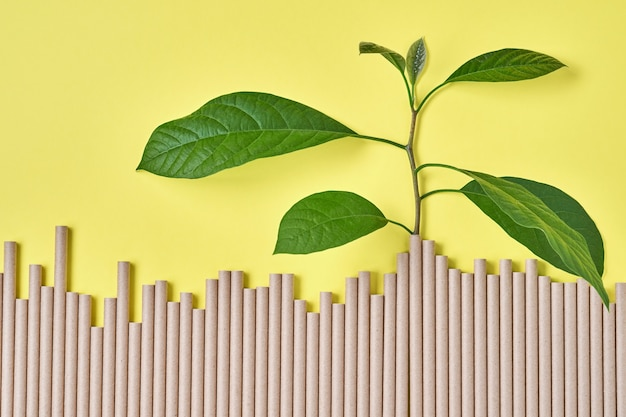 Trinkröhrchen aus papier und maisstärke, biologisch abbaubarem material und öko-papiergläsern mit grünen sprossenblättern auf gelbem trendfarbenhintergrund 2021. null abfall und plastikfreies konzept. draufsicht