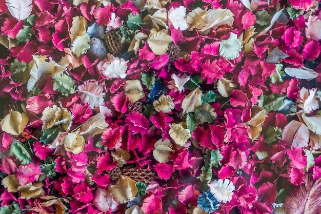 Trockenblumen und blatthintergrund, rose
