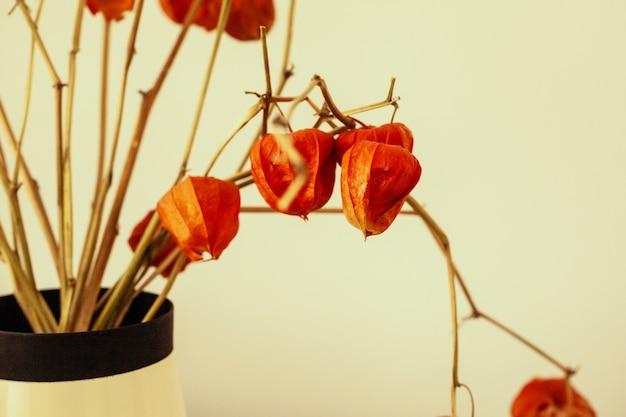 Trockenblumenstrauß im innenraum hautnah