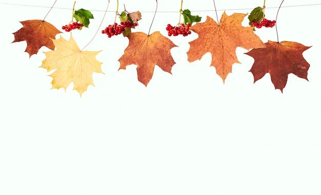 Trockene ahornblätter und schneeballbeeren hängen an einem seil