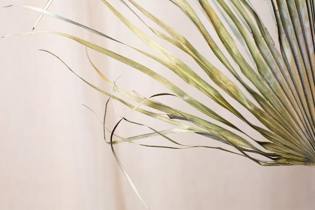 Trockene blätter der tropischen palme auf der seitenansicht des natürlichen baumwollgewebes hintergrund