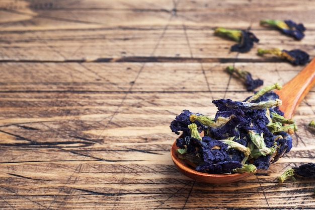 Trockene blumen thai blue tea anchan der knospen klitoria ternate.