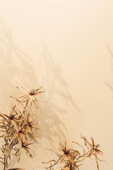 Trockene blumenzweige auf pastellbeige