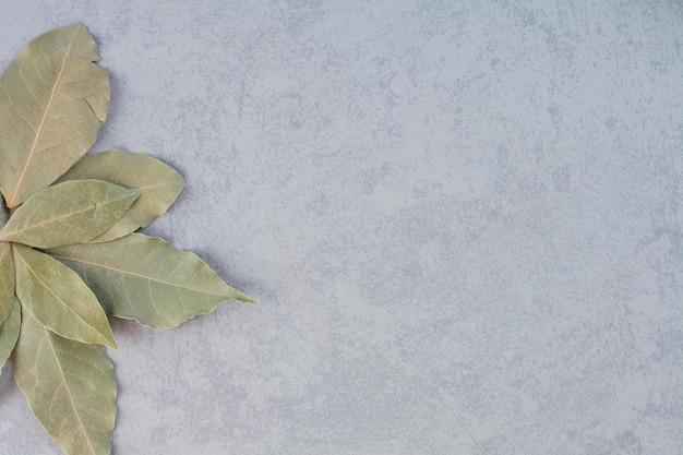 Trockene grüne lorbeerblätter auf konkretem hintergrund isoliert.