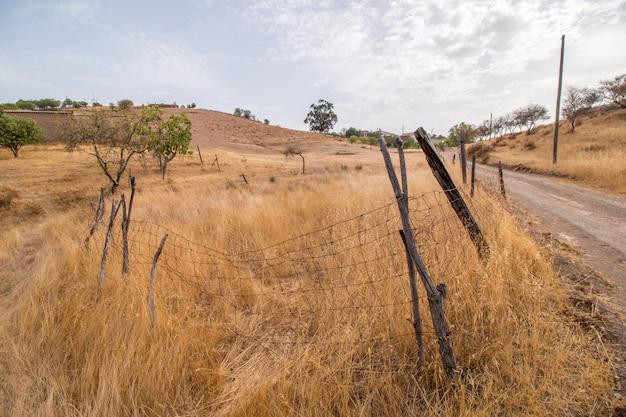 Trockene landschaft in martim longo, portugal