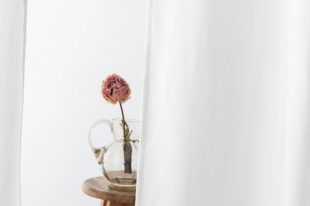 Trockene pfingstrosenblume in einem glaskrug auf einem holzstuhl in einem weißen raum