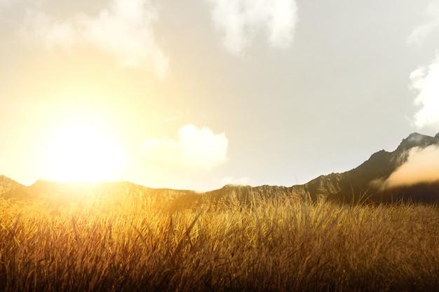 Trockene rasenfläche mit berg und sonnenlicht