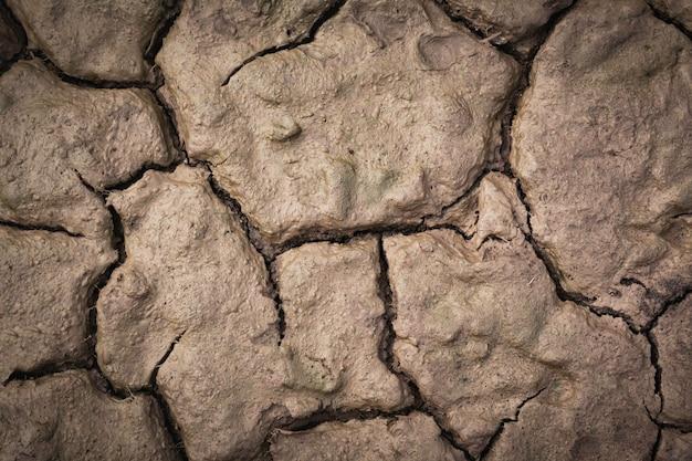 Trockene rissige oberfläche, draufsicht. cracking land hintergrund