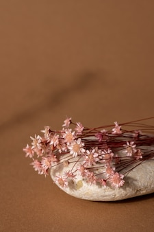 Trockene rosa blume und stein mit dunklem schatten auf hellbraunem hintergrund. vertikale seitenansicht des trends, minimales konzept