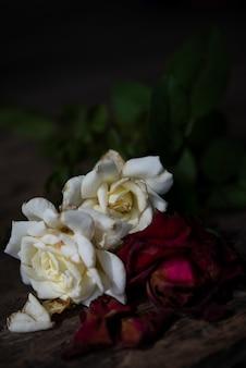 Trockene rote rosen auf hölzernem hintergrund des schmutzes