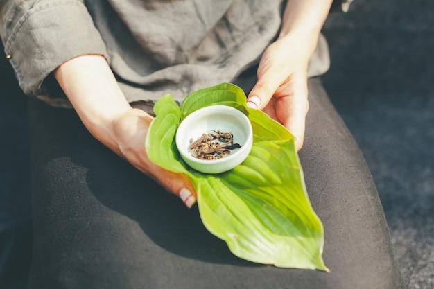 Trockene teeblätter in einer weißen untertasse.
