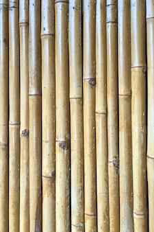 Trockener bambuszaun als der hintergrund