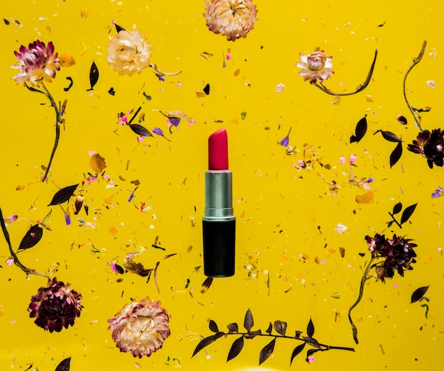 Trockenes bellis-kraut mit blumen und rotem lippenstift im gelben hintergrund lokalisiert. ohne schatten