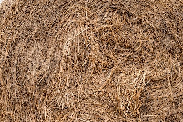 Trockenes gras für hintergrund oder tapete. gelbe strohtextur