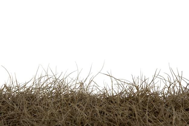 Trockenes gras lokalisiert auf weißem hintergrund. trockenes grasfeld mit beschneidungspfad.
