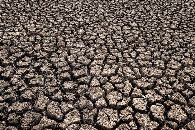 Trockenes land mit trockenem und rissigem boden, globale erwärmung