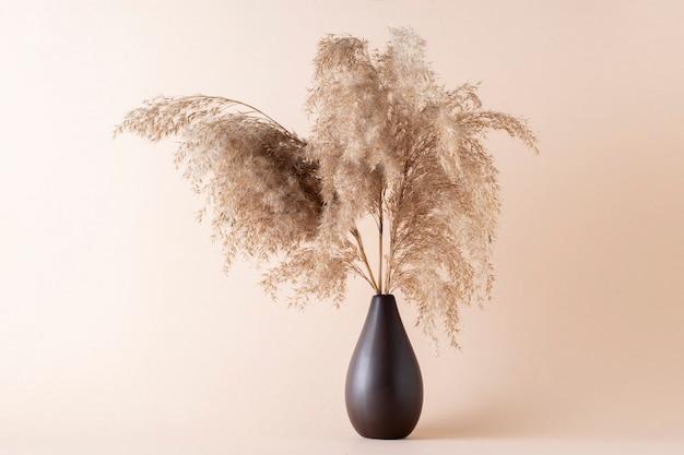 Trockenes pampasgras auf beigefarbenem hintergrund in einer vase. modernes trockenblumendekor.