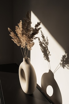 Trockenes pampasgrasrohr in runder vase. schatten an der wand. silhouette im sonnenlicht