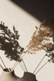 Trockenes pampasgrasrohr in stilvoller vase. schatten an der wand. silhouette im sonnenlicht