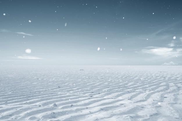 Trockenland mit winterklima. konzept der veränderung der umwelt