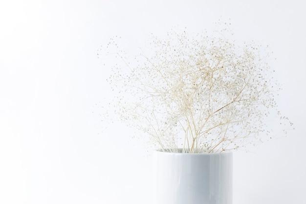 Trocknen sie zarte blumen in einer weißen vase auf einem weißen hintergrund.