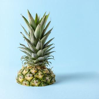 Tropische ananasinsel lokalisiert auf hellem blau
