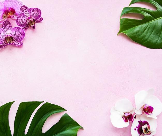 Tropische blätter monstera- und orchideenblumen